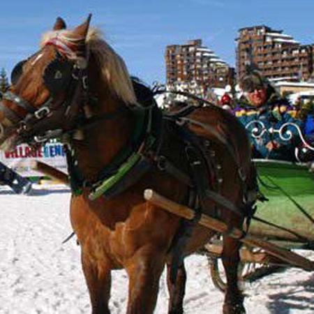 Avoriaz Horse Sleigh Taxi